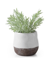 "Corsica Ceramic Crackle 2 Tone 4"" Round Pot - White"