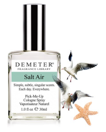 SALT AIR - PURSE SPRAY