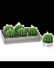 Succulent Spiny Ball Cactus Tealights Set of Six