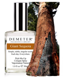 GIANT SEQUOIA - MINI SPLASH