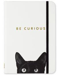 SM JOURNAL - CURIOUS CAT