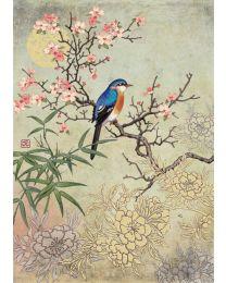 BLOSSOM BIRD Card