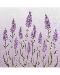 Lavender Field Luncheon Napkins