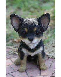 Pet Pals - Chihuahua - Black/Brown Puppy