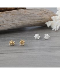 Living Coral Studs