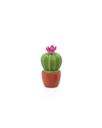 Flowering Cactus Decor Mini Canister