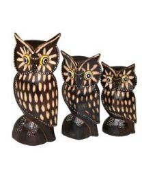 OWL - COKEK S/3